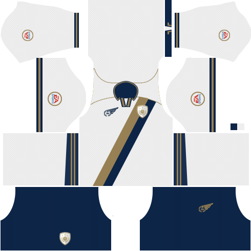 FIFA 18 Ultimate Team ( FUT 18 ) Icons Kits 2018