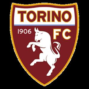 Dream League Soccer Torino logo 2018 - 2019